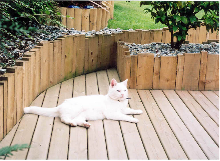 decking photo 9: One of our satisfied customer